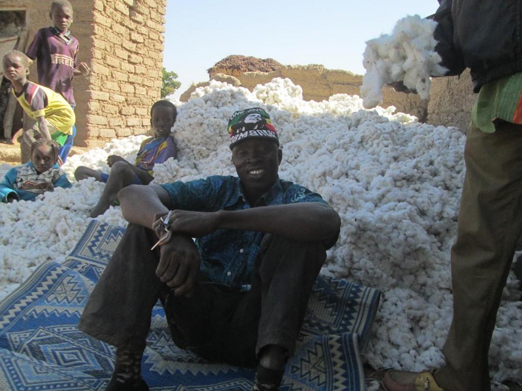 Ino se repose dans le coton cultivé ici.