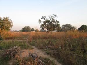 Paysage matinal à Loropeni